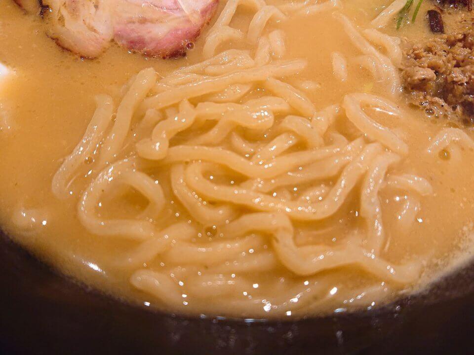 ふじ屋 NOODLE(フジヤ ヌードル)味噌ラーメン 麺