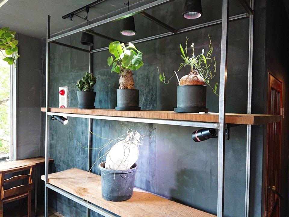 PLANT SATO COFFEE 店内②